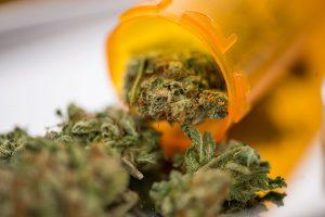 medicinal cannabis flower