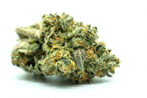 cheese kush indica cannabis flower