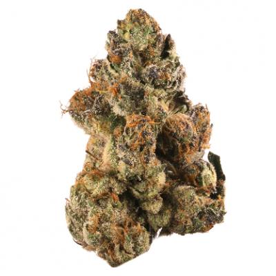 Gelato Hybrid cannabis flower